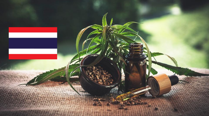 Thailand's 4 Cannabis Strains Will Be Registered as Items of National Heritage